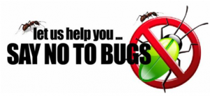 Say NO to bugs - RIP Termite & Pest Control